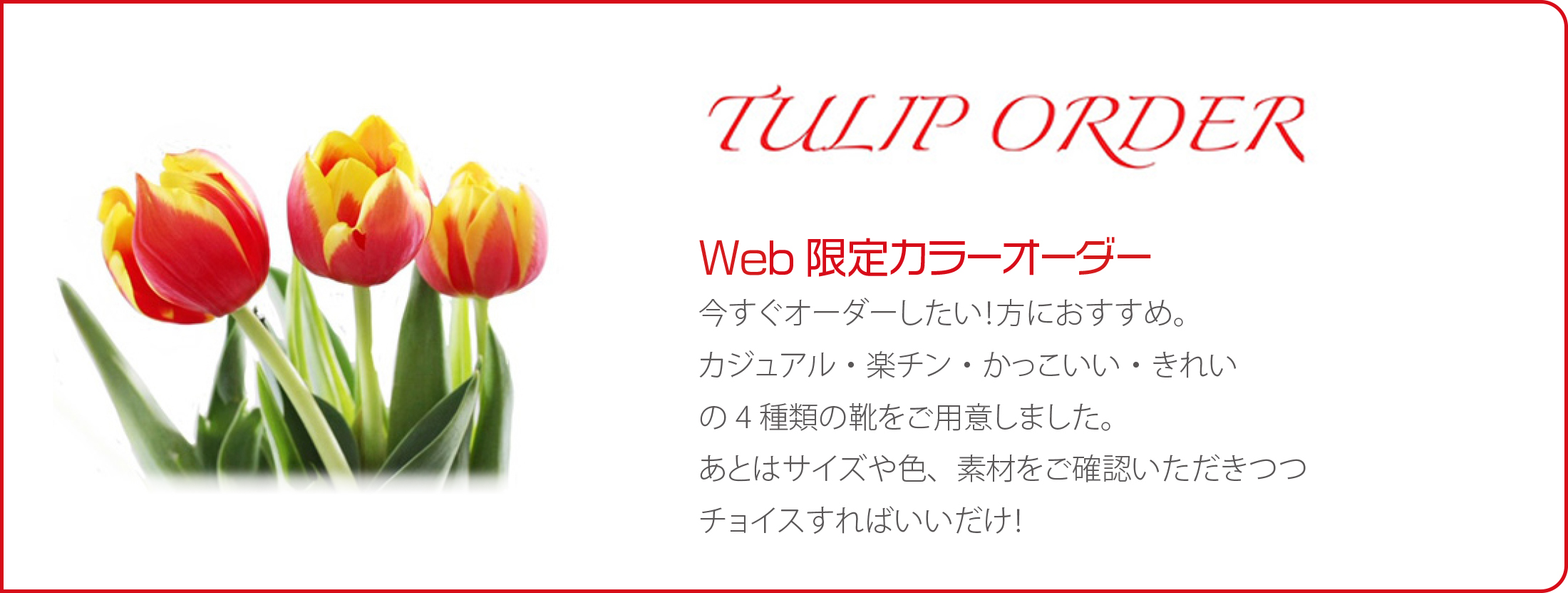 Ordermain_tulip